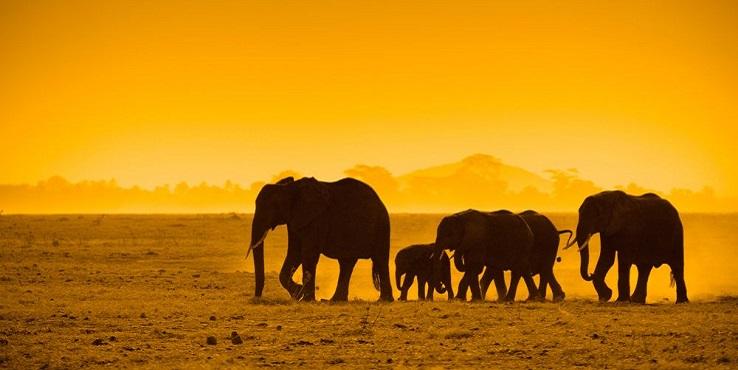 Urlaub, Namibia