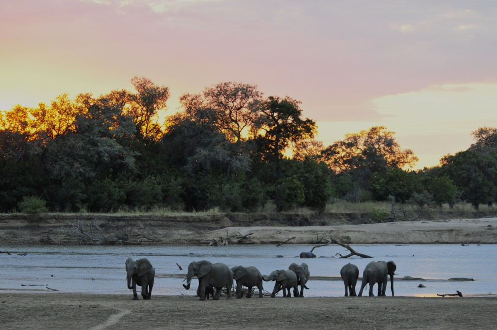 Zambian magnificent landscapes
